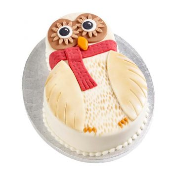 Owl Chocolate Cake